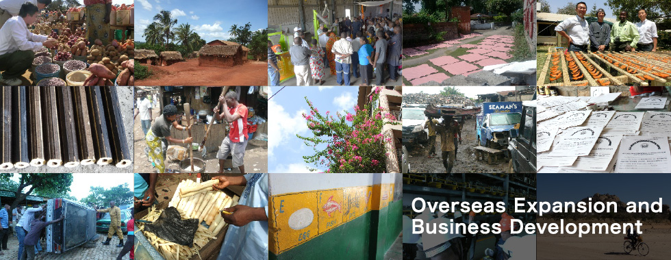 Overseas Expansion and Business Development
